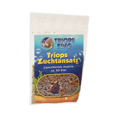 Triops Cancriformis Tadpole Shrimp Breeding approach mix by Triops King