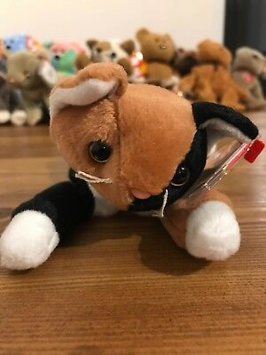 Ty Original Beanie Baby Chip the Cat 1996 with Protected Tag