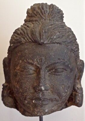 Very Rare Early Antique Superb Gandara Stone  Buddha head   Asian