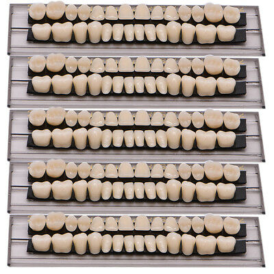 5Set Dental Denture Acrylic Resin Full Set Teeth Upper Lower Shade 23# A2