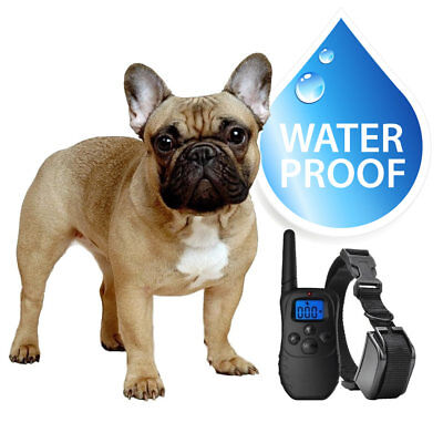 Small Dog Waterproof Shock Collar, Remote and 2 Collar Straps Rechargeable
