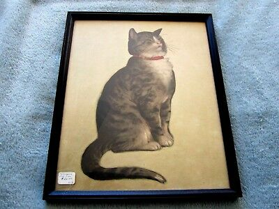 Vintage Cat Picture***framed*** Awesome