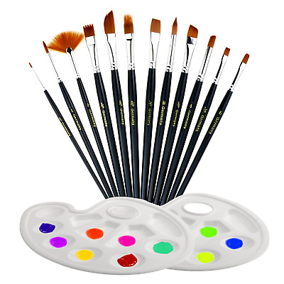TedGem 12 pcs Artist Brushes with 2 Paint Pallet,Acrylic Kit for Watercolor,...