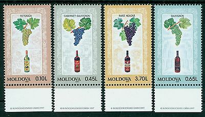 Vineyard Collection Recipe Cards Wine Bottle Grapes NIP Lined 30 Pack Revelation