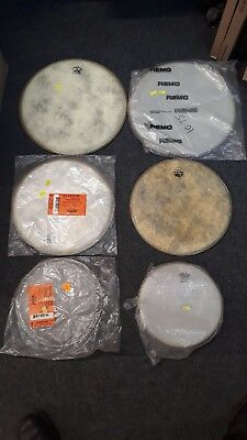 """Job Lot Of 6 Remo Fiberskyn Legacy Renaissance Heads Sizes Including 10"""" 13"""" 15"""""""