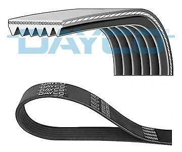 NEW 6PK1760 DAYCO V-Ribbed Belts OE REPLACEMENT Vrib01e20