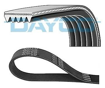 NEW 5PK835 DAYCO V-Ribbed Belts OE REPLACEMENT Vrib01e20