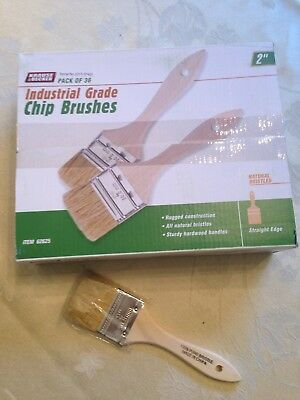 "Lot of 36 Chip Brushes 2"" Brush Perfect for Adhesives Paint Touchups 2 Inch"