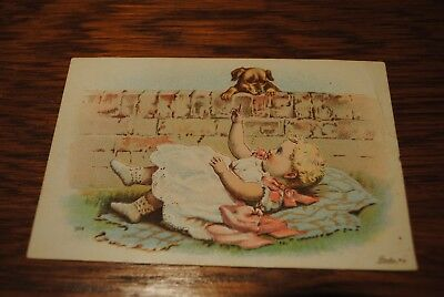 The Great Iowa State Fair Des Moines Aug 25 - Sept 2 1899 Ad Card Diving Horses