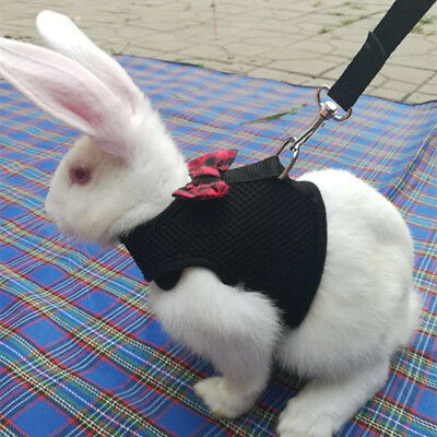 Rabbit Bunny Pet Mesh Soft Harness With Leash Small Animal Vest Lead for Hamster