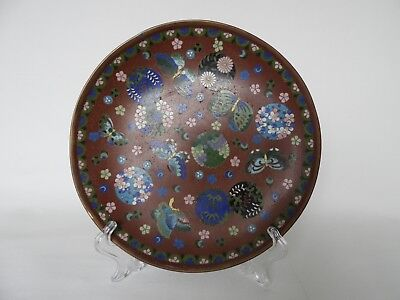 A Japanese cloisonne charger, beautiful colours on the dark brown background