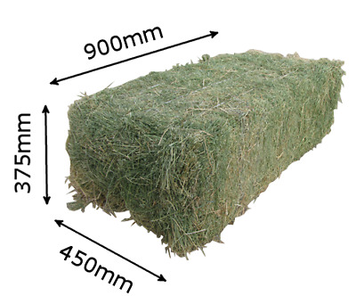 hay for animal feed, bedding 20kg large fresh bale suitable for all animals