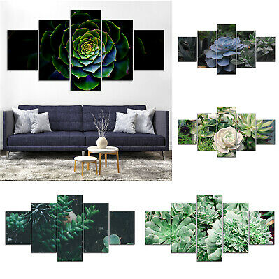 Succulent Plant Canvas Print Painting Framed Home Decor Wall Art Poster 5Pcs