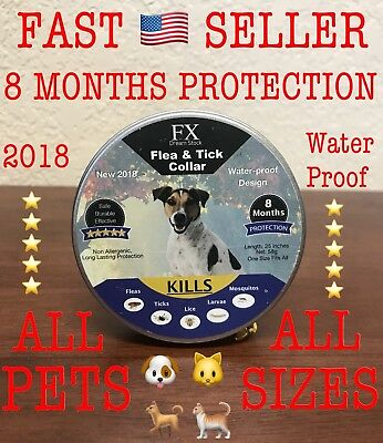 Flea and Tick Collar for Dogs & Cats Waterproof Flea Control Natural Ingredients