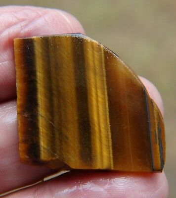 Rough South African 46.49 ct Tiger Eye.