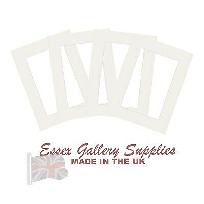 Picture And Photo Mounts SOFT WHITE (Listings Reset - Thousands Sold)