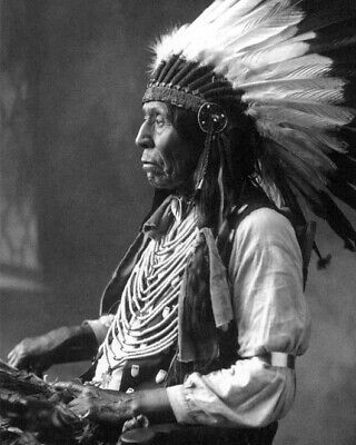 Native American Indian CHIEF WILD HORSE 8x10 Photo Oglala Sioux Print Poster