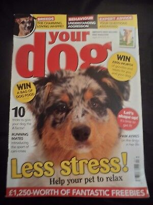 Your Dog Magazine - April 2015 - Whippet - Help your dog relax