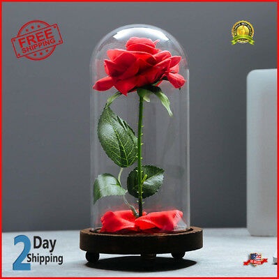 Valentines Day Gift For Girlfriend Him Her Wife Husband Mom Eternal Real Rose  sc 1 st  PicClick & BEST ROMANTIC ANNIVERSARY Birthday Gift for Her for Him Wife ...