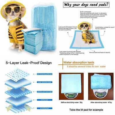Pet Training & Puppy Pee Pads Dog Wee Potty Pad Extremely Strong Super Absorbent