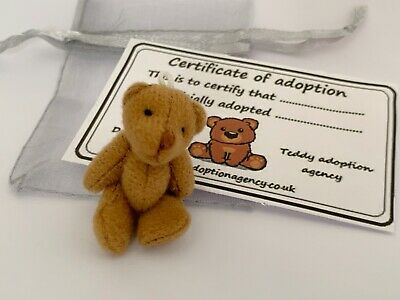Tiny Teddy in Gift Bag With Adoption Certificate Pocket Pal Travel Teddy