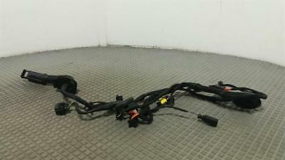 2017 Lamborghini  Huracan 2014 On Complete Drivers Door Wiring Loom Harness RH
