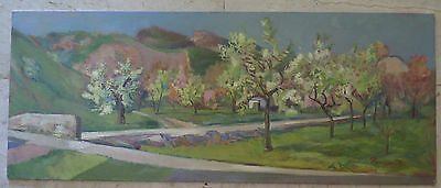 PAINTING ANTIQUE painting OIL ON BOARD SIGNED LANDSCAPE SPRINGY SPRING p7