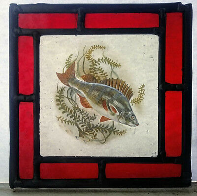 Stained Glass Perch Fish panel - Lovely kiln fired. Fishing vintage stunning!