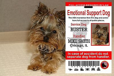 USA Service Dog ID Card, Emotional Support Animal, ADA Id Service Dog Card