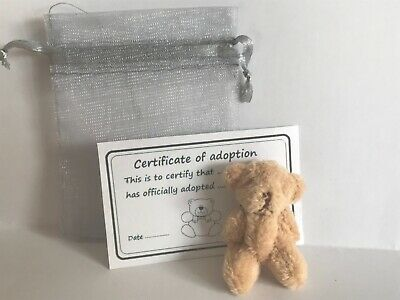 Tiny Plush Teddy in Gift Bag With Adoption Certificate Party Bag Travel Teddy