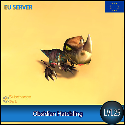 Obsidian Hatchling lvl25 Pet | All Europe Server | WoW Warcraft