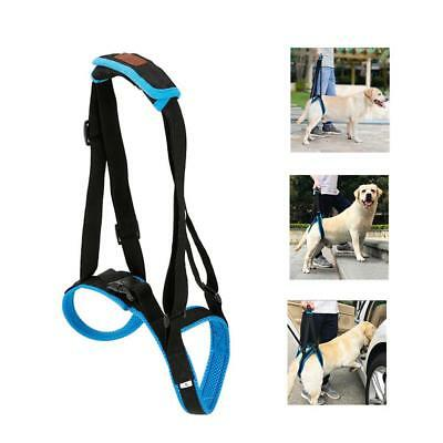 Adjustable Portable Support Pet Dog Lift Harness Belt Helps Rear Back Legs Stand