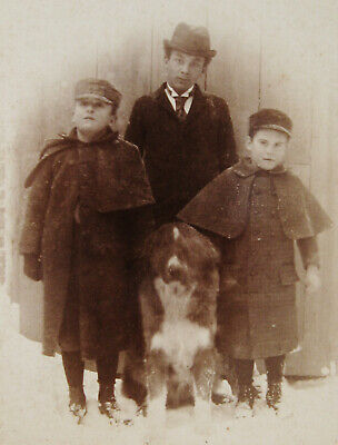 Antique Cabinet Photo Portrait Of 3 Handsome Dapper Boys & The Nice Family Dog