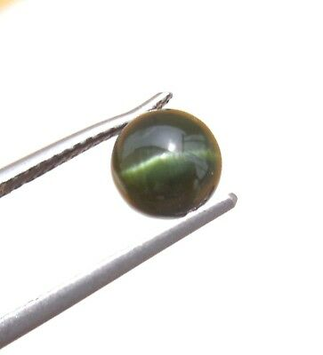 1.50 Ct 100% NATURAL GREEN  KORNERUPINE CATS EYE ROUND CABOCHON  LOOSE GEMSTONES