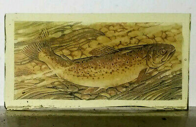 Stained Glass Brown Trout Fish - Kiln fired Painted / transfer fragment pane!