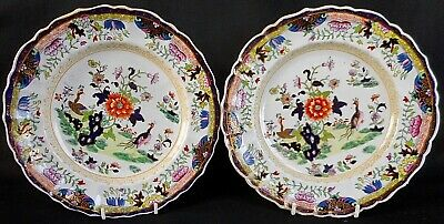 Early 19Th Century Mason's Patent Ironstone China Plates - Excellent Condition