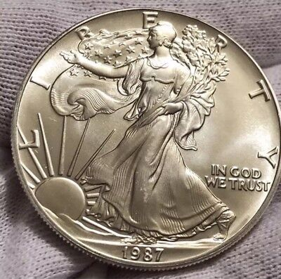 1987 Liberty Walking American Eagle Silver 1 oz. One Dollar Coin Collector~BU.