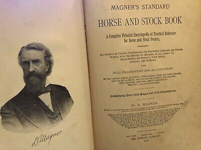 Rare Antique 1898 Magner's Standard HORSE & STOCK BOOK Illustrated Farm Animals