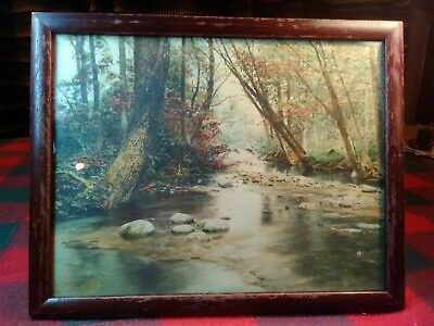 Antique Woodland Symphony Signed by FRED THOMPSON Hand Colored Photo c1900-1910