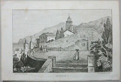Vista Madeira Madera Portugal 1874 Nordisk Billed Magazin Original Print