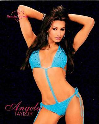 Angela Taylor 8 of 8 2004 Bench Warmer Series Two Jumbo 4x5 Box Topper
