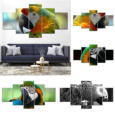 Parrot Bird Modern Canvas Print Painting Framed Home Decor Wall Art ee Poster 5P