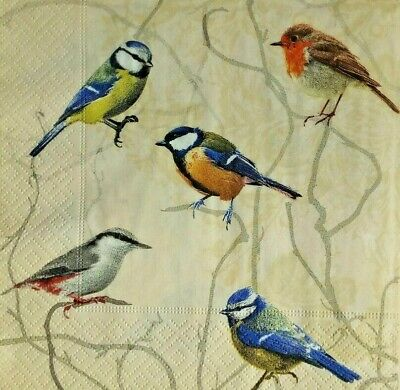 4 single paper napkins for decoupage, birds.4 Servilletas decoradas pájaros