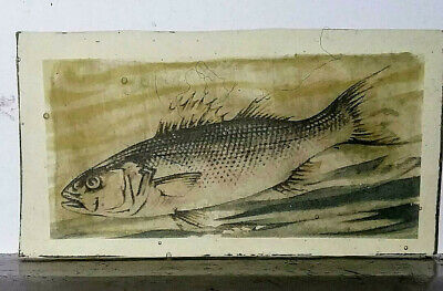 Stained Glass Bass Fish - Kiln fired Painted / transfer fragment vintage pane!
