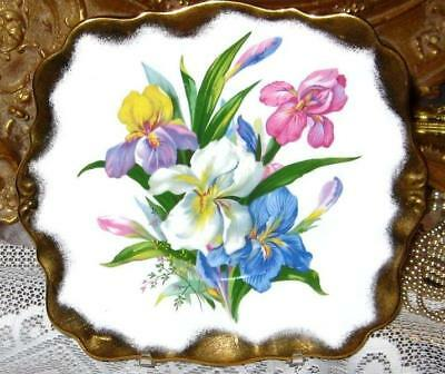 Royal Standard Fine Bone China IRIS FLORAL HEAVY GOLD Tabbed Cake Plate