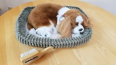 Perfect Petzzz Plush Sleeping Breathing King James Cavalier Spaniel Puppy Dog
