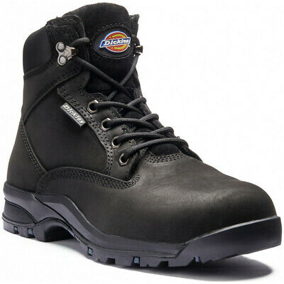 Dickies Womens/Ladies Corbett Leather Composite Toe Cap Safety Boot