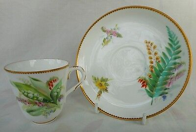 Worcester Cup & Saucer ~ Decorated With Wild Flowers - Attractive Display !