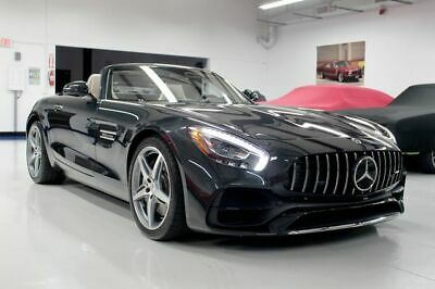 2018 Mercedes-AMG GT Roadster 2D Mercedes-Benz Mercedes-AMG GT | Financing, Shipping & Extended Warranties Availa