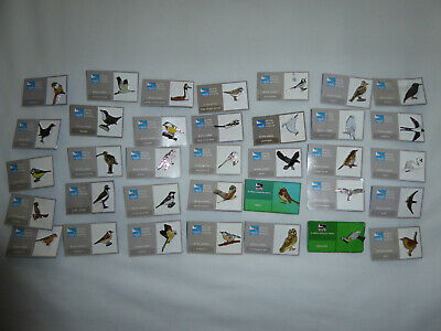 Pack of 35 RSPB Souvenir Pin Badges